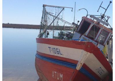 Atum Boat